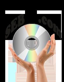 Logo_sebo_indesign-1